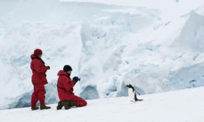 akademik vavilov antarctica in depth cruise