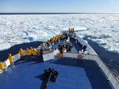 world explorer spitsbergen polar bear cruise