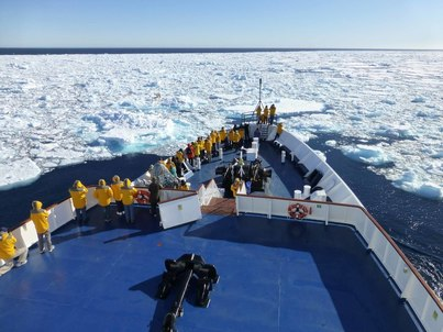 world explorer spitsbergen polar bear cruise