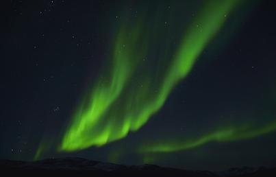 plancius northern lights cruise